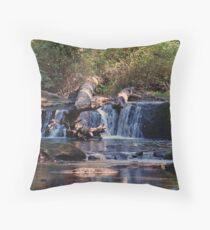 Whatcom Creek Throw Pillow