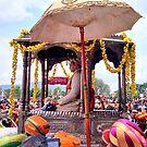 The Maharaja by bharath