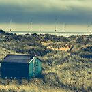 Fisherman's Beach Hut by Robert Cook