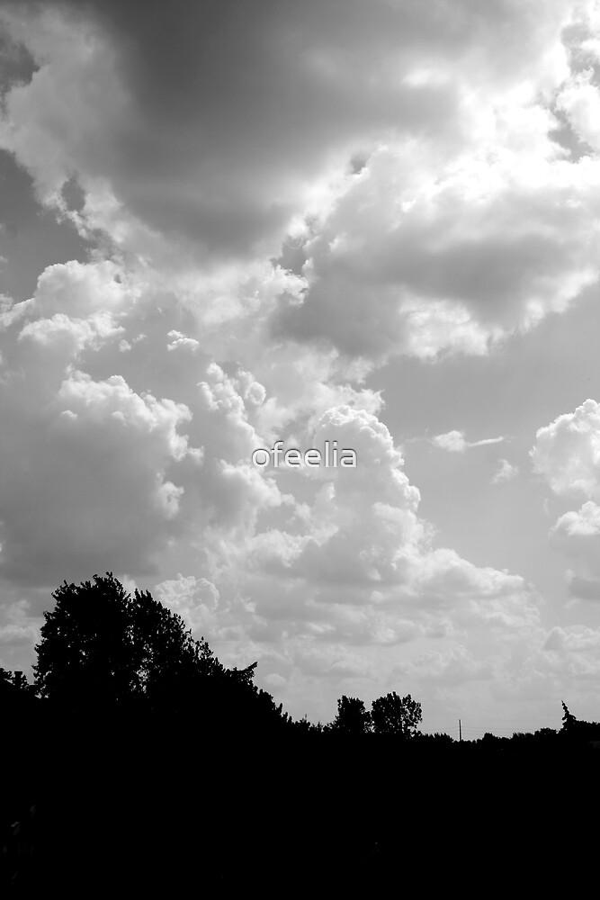 beauty in the sky  by ofeelia