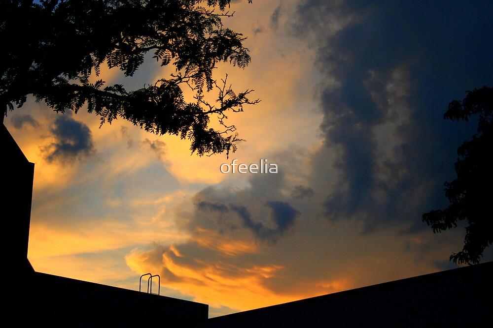 orange sky by ofeelia