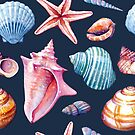 Seashells Pattern 2 - Colorful Dark by SamNagel