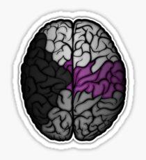 Demisexual Brain Sticker