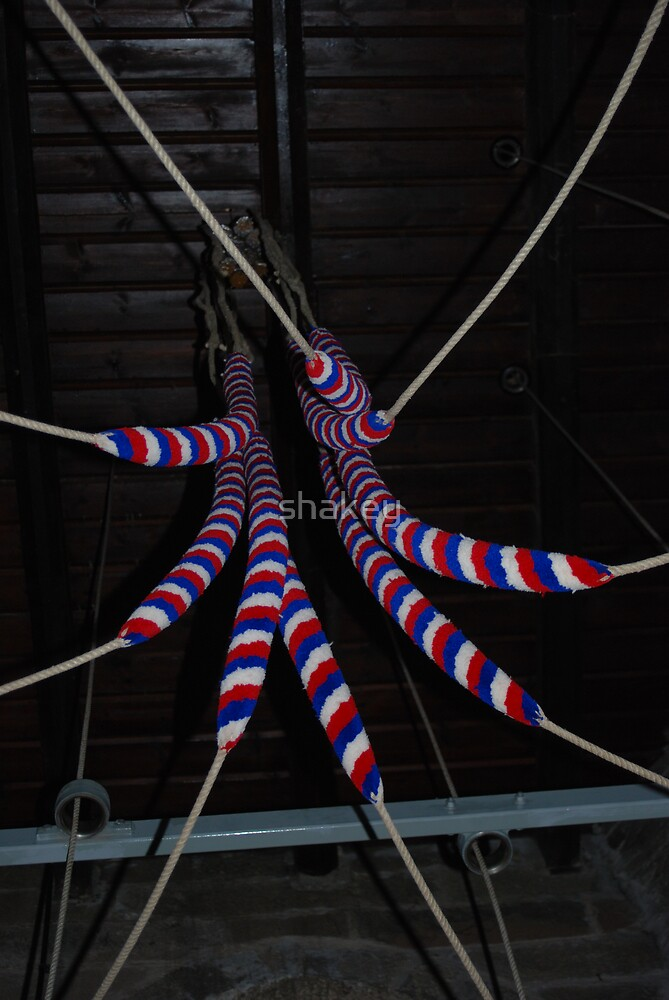 Bell ropes by shakey