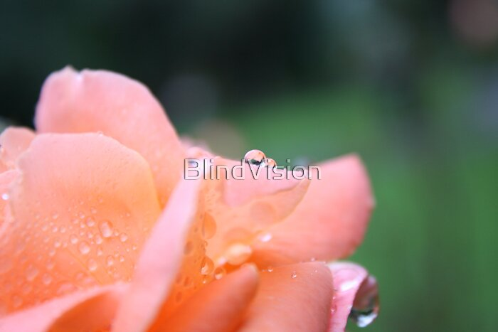Patience by BlindVision