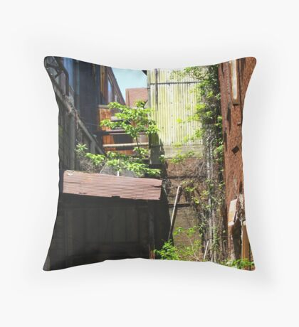 Life in Unexpected Places  Throw Pillow