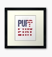 Puppetry Love Hobby USA Distressed Flag Framed Print