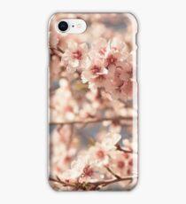 Pink Flowers Blooming Peach Tree at Spring iPhone Case/Skin