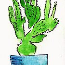 Single colourful cactus in blue pot by Jax Blunt