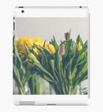 Multicolored tulips flowers bouquet in a glass vase iPad Case/Skin