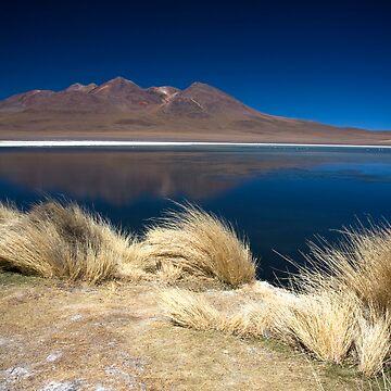 Bolivia Lake by jscott1976