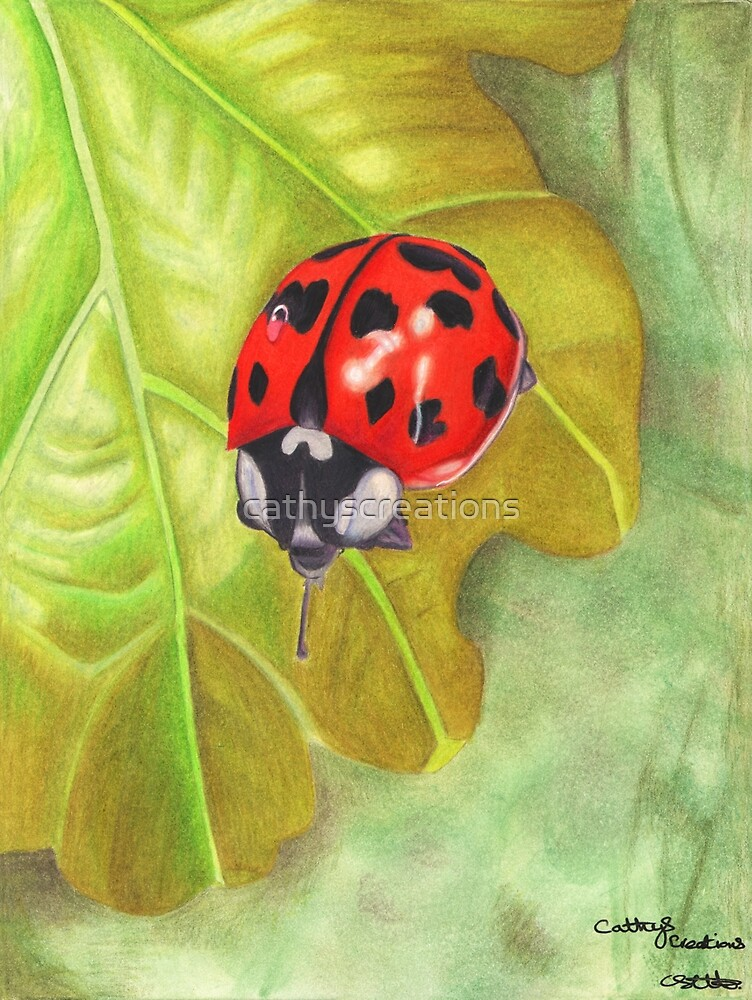 A Ladybird by cathyscreations
