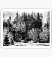 Forest #forest #blackandwhite Sticker