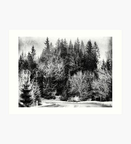 Forest #forest #blackandwhite Art Print