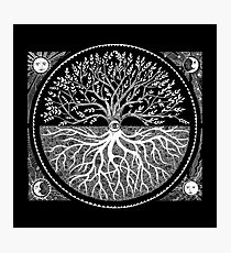 Druid Tree of LIfe Photographic Print