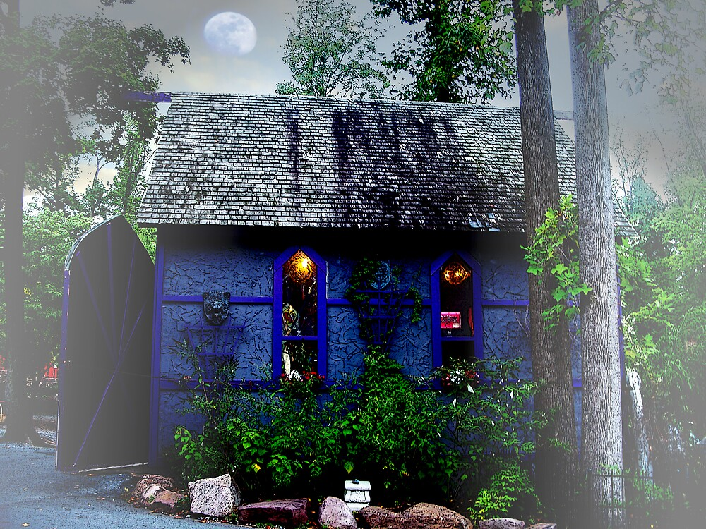 Cottage in the full moon by Judi Taylor
