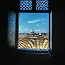 View of the Vatican by hans p olsen