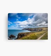 Pembrokeshire Coastal Path Metal Print