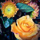 Golden Rose by Barbara Wyeth