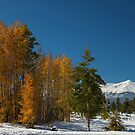 Leadville Autumn Views by Bo Insogna
