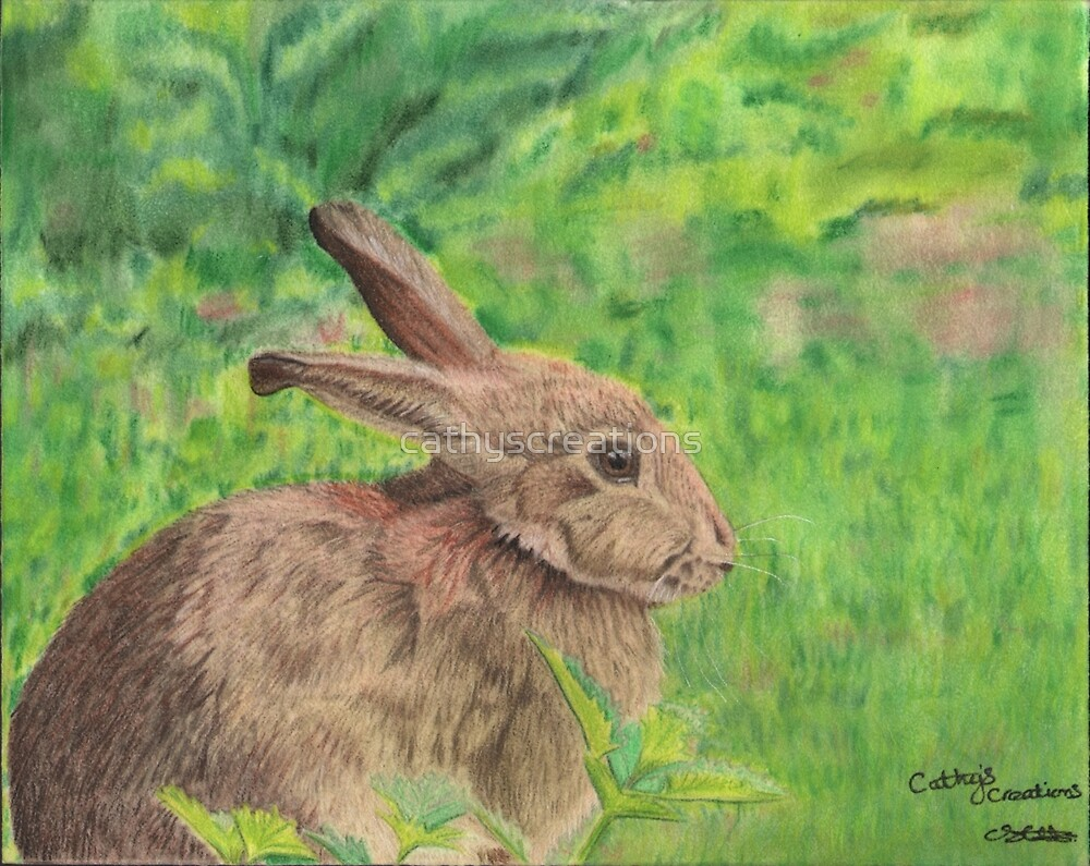 Bunny rabbit in the grass by cathyscreations