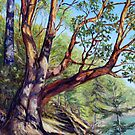 Mayne Island BC Landscape Paintings by Terrill Welch  by TerrillWelch