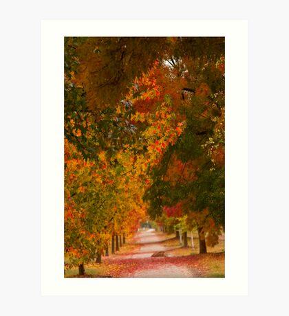 Bright Path Art Print