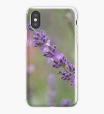 close up of lavdender violet stem. iPhone Case