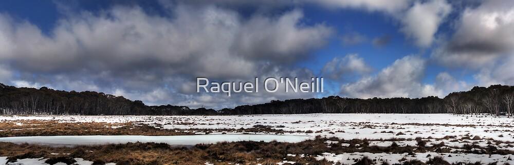 Snow Melt by Raquel O'Neill
