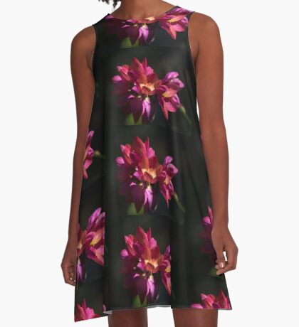 Flowers of Red and Pink A-Line Dress