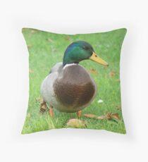 A Mallard Drake Throw Pillow