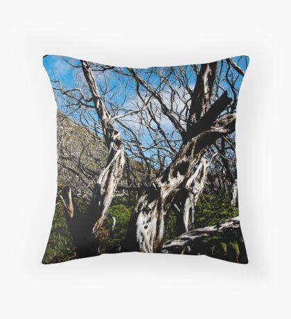 untitled #115 [wilson's promontory] Throw Pillow