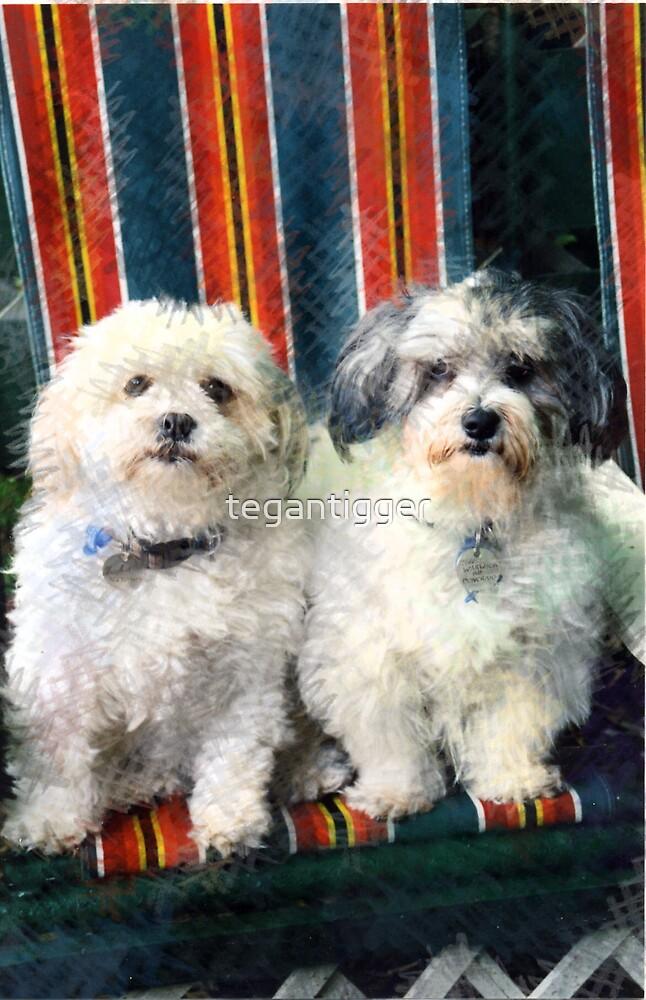 Puppies Pals by tegantigger