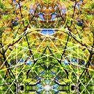 Sacred Botanidelica by webgrrl