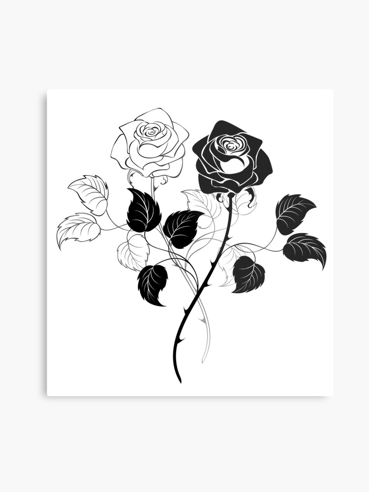 5a82b9dab Two Roses ( Black and White )