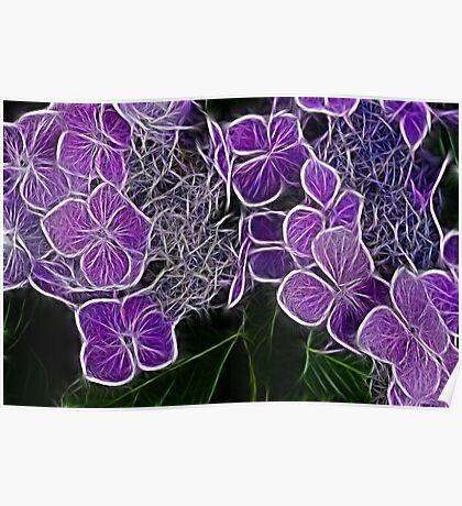 Colour me Purple  Poster