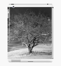 Winter Tree iPad Case/Skin