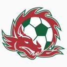 Welsh Dragon Soccer Ball  by patrimonio