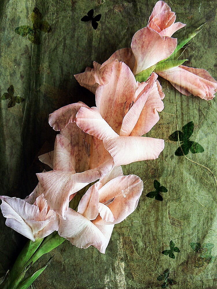 Gladioli and Butterflies. by mariarty