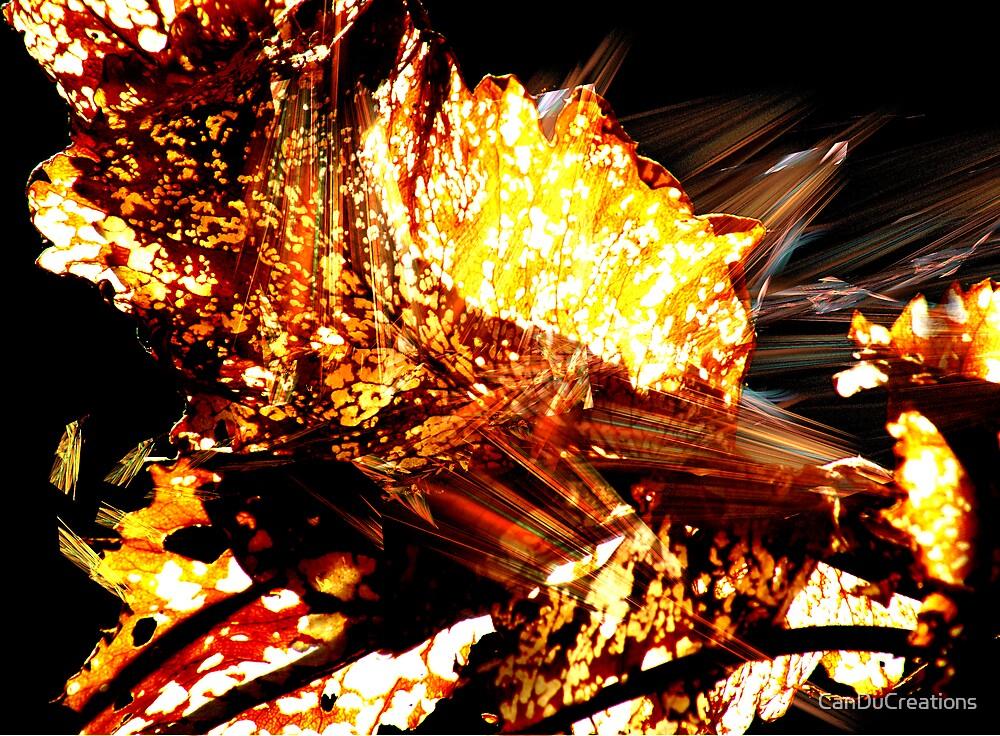 Autumn burn by CanDuCreations