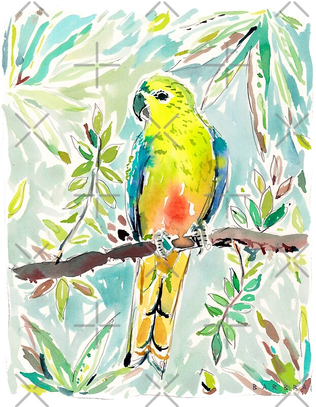 Cutie the Orange-bellied Parrot by Barbra Ignatiev\