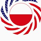 Polish American Multinational Patriot Flag Series by Carbon-Fibre Media