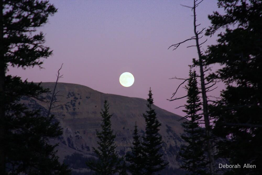 Full Moon  by Deborah  Allen