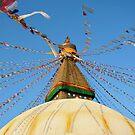 The Stupa by David Reid