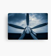 Challenge of the sky Canvas Print