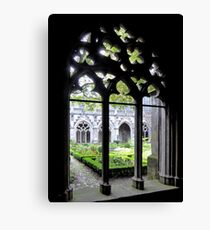 Looking for peace Canvas Print