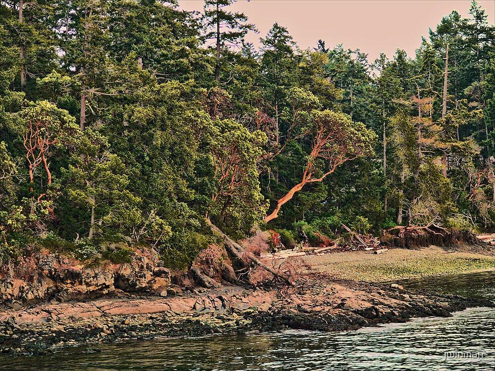 Shoreline by jwinman