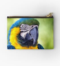 Macaw Parrot Studio Pouch