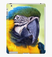 Macaw Parrot iPad Case/Skin