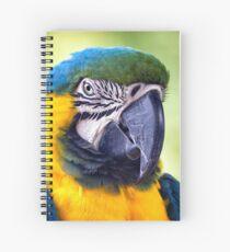 Macaw Parrot Spiral Notebook